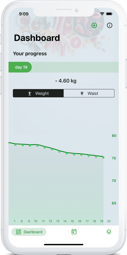 functions of the 90 day diet app